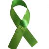 awareness-ribbon-lime