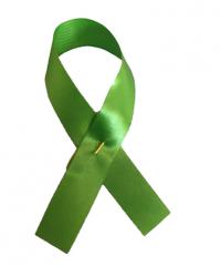 Awareness Ribbons Lime Green (100 units)
