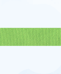 lime green petersham ribbon